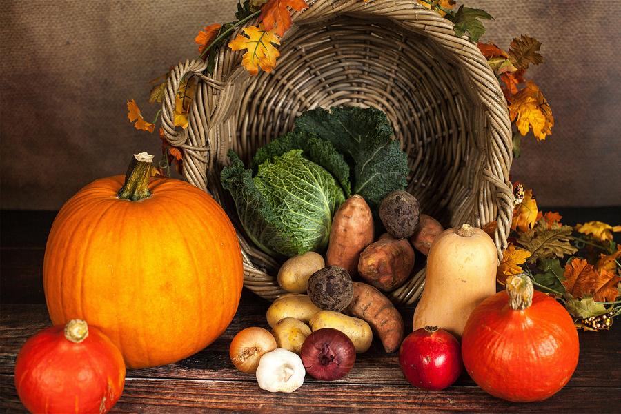Manual para seniors sobre la alimentación en otoño